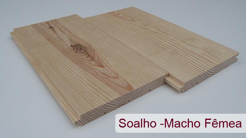 solhomachofemea1
